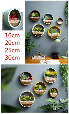 New Round Hanging Wall Vase Planter for Succulents Herbs Wall Decor 1PCS