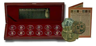 Biblical Holy Land: Box of 12 Ancient Judaea Coins from the Time Of Jesus, 323BC