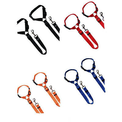 1pcs Safety Nylon Strong Dog Pet Training Rope Slip Lead Tracking Lunge Leash