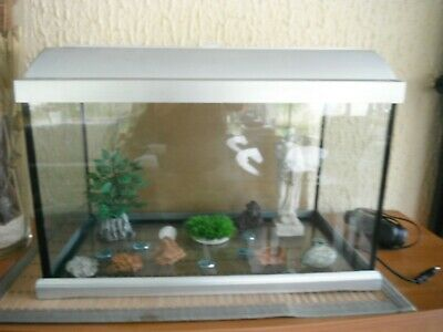 Aquarium 60 Litres + Pompe + Decoration