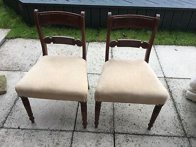 Pair Of Georgian Dining Chairs