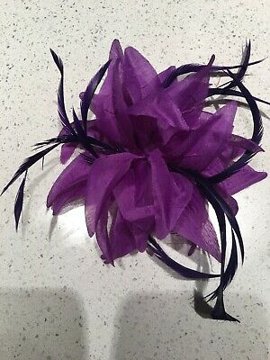 New Coloured Feather Fascinator Clip Brooch Pin Hat Races Wedding Ascot Evening