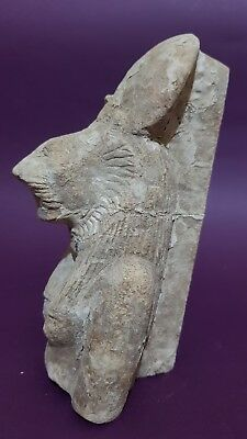 ANCIENT EGYPTIAN ANTIQUES Half STATUE Of GODDESS SEKHMET EGYPT Luxor STONE BC