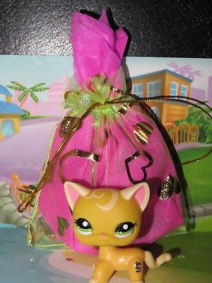 "Pet shop Chat Europeen * Petshop Kitty Cat #2194 "" NEUF "" +Sachet Cadeau"