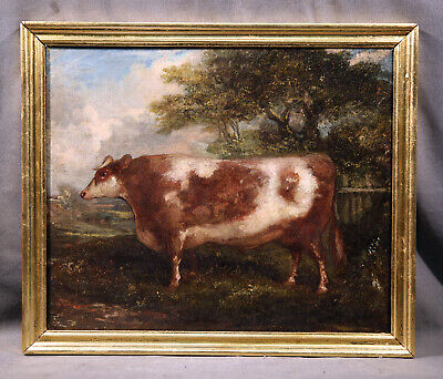 19th Century French Animal Antique Genre Oil Painting of Short Horn Cow