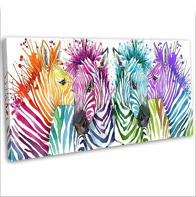 ZEBRA WEARING STAR GLASSES WATERCOLOUR PAINT STYLE CANVAS PRINT WALL ART PICTURE