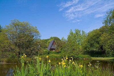 Holiday Lodges & Cottages Cornwall - June, Summer £100 EBAY discount