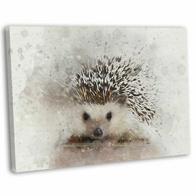 Hedgehog Canvas Wall Art Print Framed Abstract Watercolour Picture 76x51cm