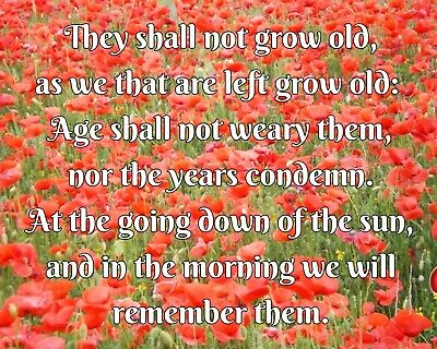 They Shall Not Grow Old Poem Remembrance Day Poppy Metal