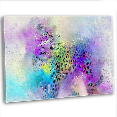 Leopard Abstract Multicoloured Canvas Print Framed Animal Wall Art Picture