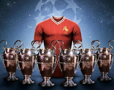 Liverpool Football Club - Champions League winners 2019 6 CUPS photograph 25