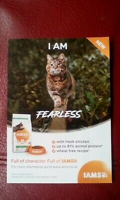 Iams £2 Off Cat Dry Food Vouchers Money Off Coupons