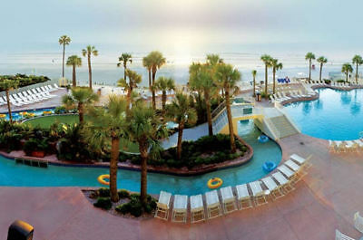 Daytona Beach Wyndham Ocean Walk 1 Bed Deluxe July 13 - July 20
