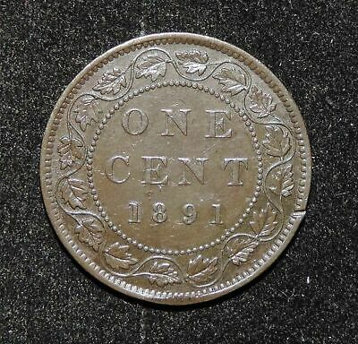 1891 Canada Small Date Small Leaves Obverse 2 Victoria Large One Cent Coin