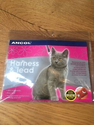 Harness And Lead Set For Cat In Red