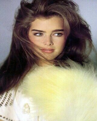 8x10 Brooke Shields GLOSSY PHOTO photograph picture hot sexy cute young 80s