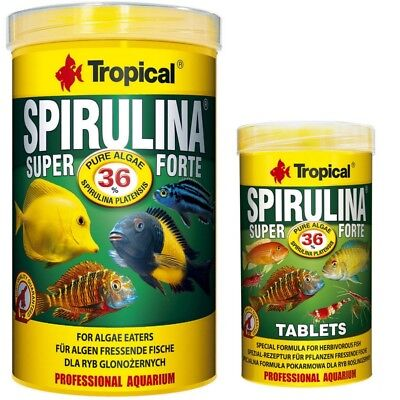Tropical Spirulina Platensis Super Forte 36% 1000 ML+250 ML 36% Tabs