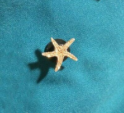 Cute Glittery STARFISH Star Fish Sea Shell Beach Shore Holey Clog Shoe Charm