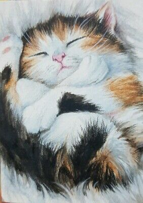 MAINE COON CAT In Grass ACEO original watercolor painting