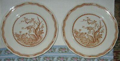 """4 Plates Antique 1921 Luncheon Furnivals Brown QUAIL 8 3/4"""" Made in England"""