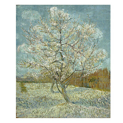 Canvas Print Picture Van Gogh Painting Repro Home Decor Wall Art Tree Framed