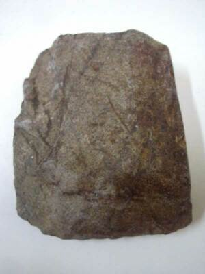 Ancient Stone Axe Neolithic Artifact Tool Primitive Authentic