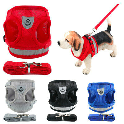 Small Pet Harness Dog Cat Soft Mesh Walk Collar Leash Safety Strap Vest