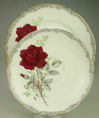 Royal Stafford Bone China Duo Saucer & Side Plate Roses to Remember GG6