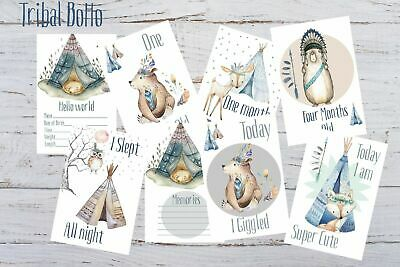 Baby Milestone Cards, Boho Tribal Bear, Boys, Pack of 34, 300gsm, photo prop