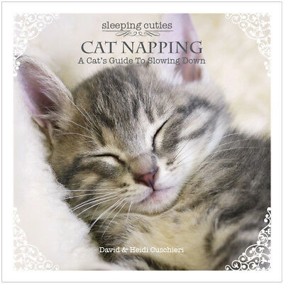 SLEEPING CUTIES CAT NAPPING A Cat's Guide to Slowing Down  BRAND NEW GIFT BOOK