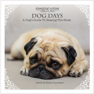 SLEEPING CUTIES DOG DAYS A Dog's Guide to Beating the Blues  BRAND NEW GIFT BOOK