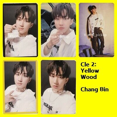 Stray Kids photocard album Yellow Wood Official Photo card  : ChangBin