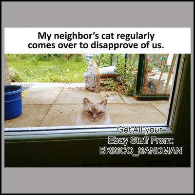 "Fridge Fun Refrigerator Magnet ""MY NEIGHBORS CAT DISAPPROVES OF US"" Funny Meme"