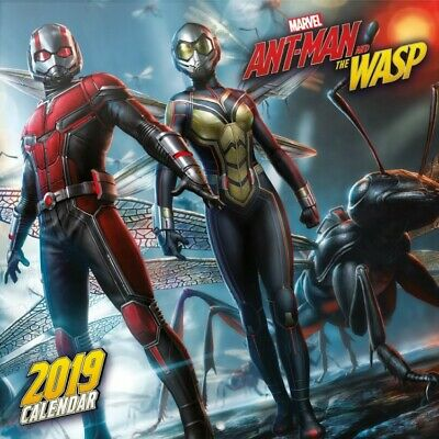 Ant-Man And The Wasp - Marvel Poster Official Calendar 2019 (12x12in) #117240