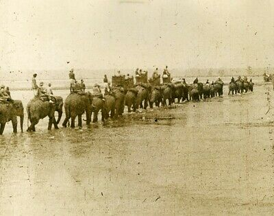 royal hunting Trek Nepal on the way to the hunt chasse elephants 1920' old photo