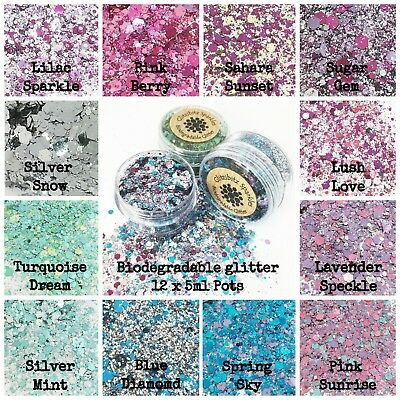 Biodegradable Glitter Cosmetic glitter 12 x 5ml Festival Party Makeup set 2