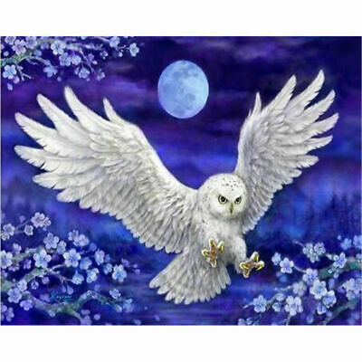 White Owl Full Drill DIY 5D Large Diamond Painting Crystal Embroidery 50*40cm AU
