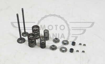 Intake Exhaust valve kit With springs Suzuki GN125 GS125 GZ125 DR DP