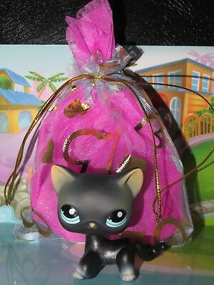 "Pet shop Chat Chaton Europeen * Petshop Kitty Cat # 994 "" NEUF ""+ Sachet Cadeau"