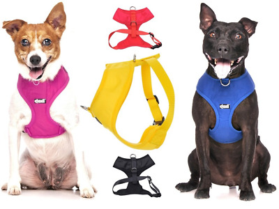 Dexil Elite Range Padded Waterproof Adjustable Back and Front Ring Non-Pull Pet