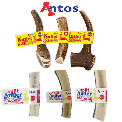 Antos Deer Antler Natural  Dog Puppy Chews XS S M L XL + Split Option For Ease