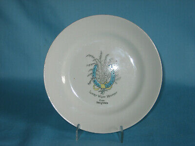 Arcadian China Tea Plate* - Lucky White Heather From Skegness decoration