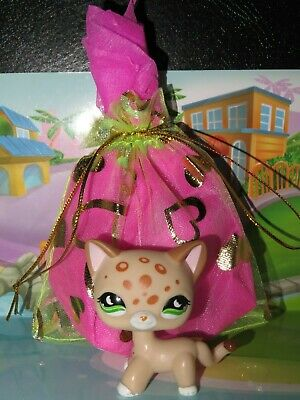 "Pet shop Chat Chaton Europeen * Petshop Shorthair Cat #852 ""NEUF"" +Sachet Cadeau"