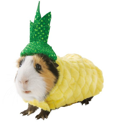 Guinea Pig Small Pet Pineapple Holiday Halloween Costume Clothes Cute Funny