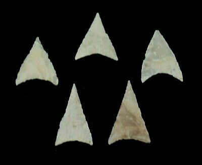 Best Of The Best!!! Five White Chert Neolithic Projectile Points