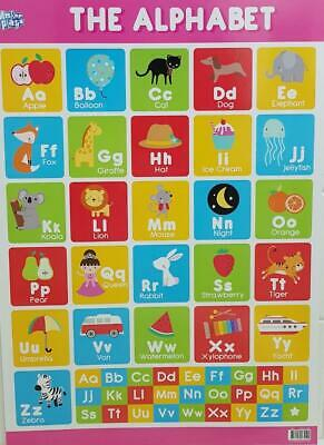 The Alphabet Educational Poster New - Maxi Size 49 x 69 cm 27 x 19 inches NEW