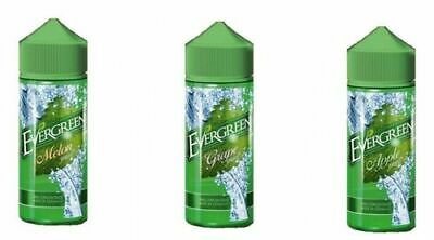 EVERGREEN Minty Classic Aroma 30ml in 120ml Flasche