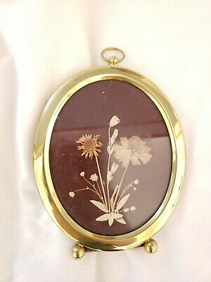 Midcentury Made In ITALY Antique Pressed Flowers And Frame On Velvet