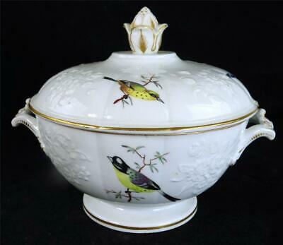 Antique English Regency Period Porcelain Sauce Tureen Birds & Insects