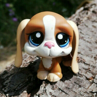 Littlest Pet Shop LPS chien Basset #1655